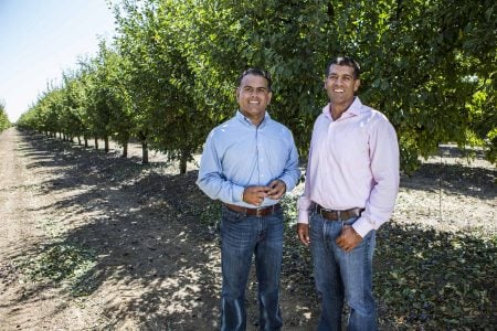 two growers in orchard