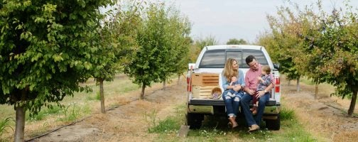Photo of a family in the back of the truck within a prune orchard