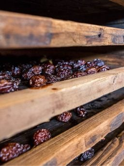 Prunes on drying racks