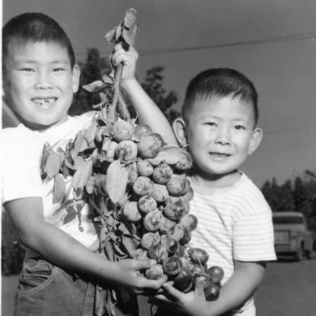 Gene and Glenn Tanimoto with Prunes Historical
