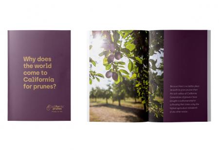 Trade brochure image